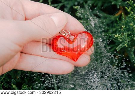 Red Glass Heart In Hand. Raindrops Glisten On The Cobwebs. Horizontal Background.