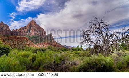 The Watchman Mountain Viewed From The Pa'rus Trail That Meanders Along And Over The Virgin River In
