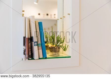 Seoul,south Korea-march 2020: Book At The Shelf With A Home Plant Decoration. Minimalist Home Decors