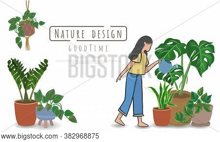 Potted Plants With Woman Watering The Plants , Indoor And Outdoor Landscape Garden Potted Plants Iso