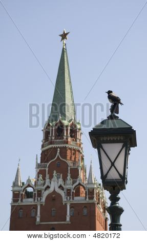 The Crow, Posing Against The Moscow Kremlin Tower Background