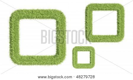 Frame From Grass Isolated On White Background