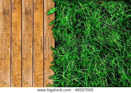 Wood And Green Grass