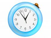 Grape snail climbing on a clock, isolated on white poster