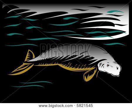 Dugong or manatee