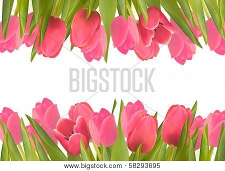 Holiday Background With Pink Beautiful Flowers. Vector Illustration.