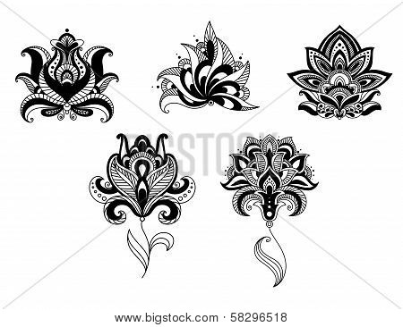 Ornate indian and persian floral design set