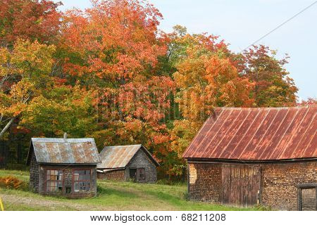 Autumn in Maine countryside