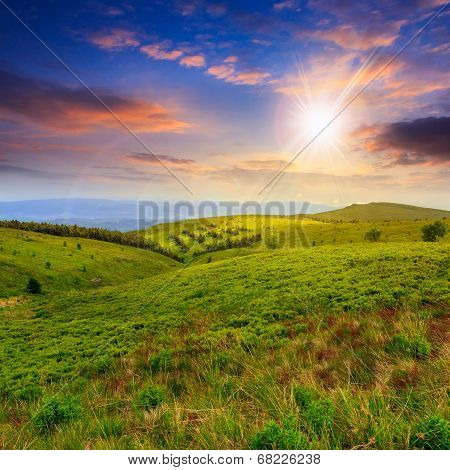 Light On Mountain Slope With Forest At Sunset