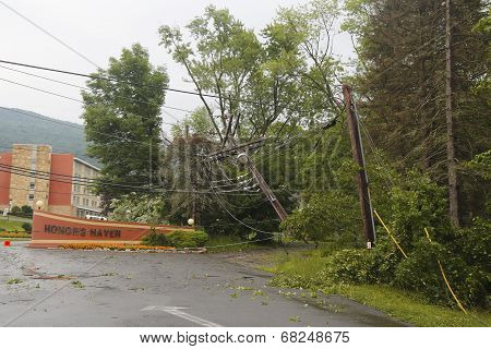 Fallen tree damaged power lines in the aftermath of  severe weather and tornado in Ulster County,NY