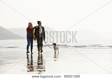 Senior Couple Walking Along Winter Beach With Pet Dog