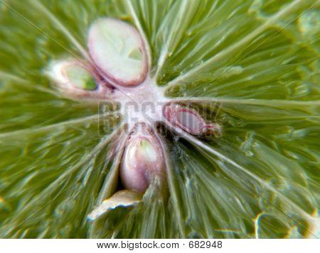 Lime Seeds