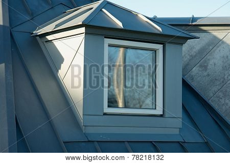 Modern Classical Vertical Roof Window