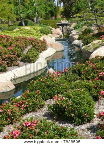 Japanese Garden With Flowers And Creek