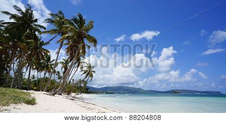 Beach View In Las Galeras On Peninsula Of Samana