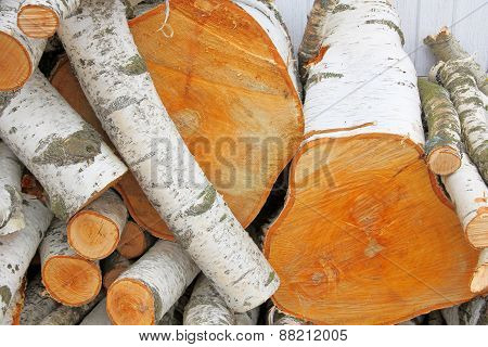 Pile Of Logs.