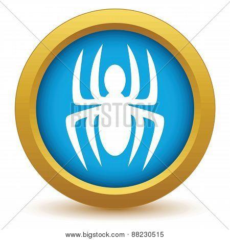 Gold spider icon