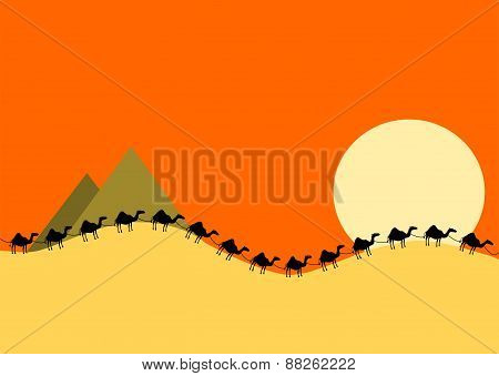Camel Train at Sunset