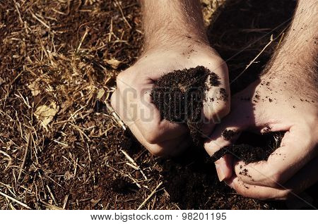 hand grasping a brown dry patch of earth in despair poster
