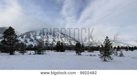 The Grand Tetons In Winter