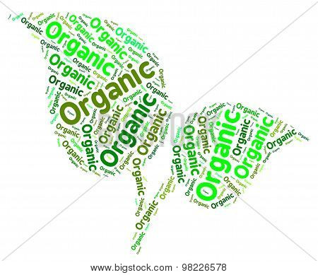 Organic Word Shows Nature Healthful And Biological