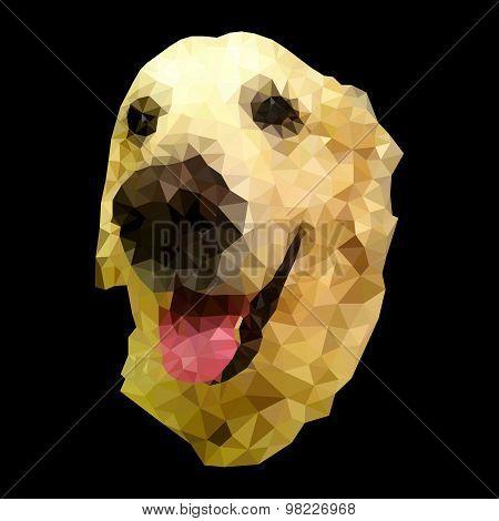 riant dog