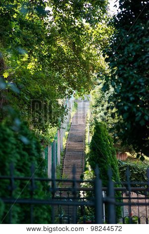 very long stone staircase. Around green trees
