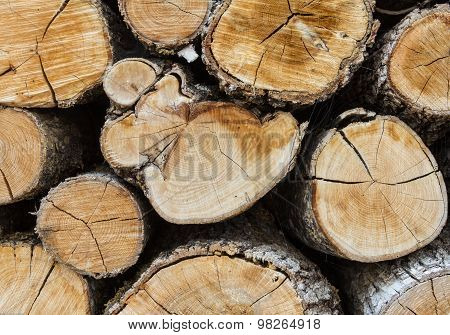 Firewood Background Closeup