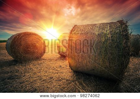 Baled Hay Rolls At Sunset