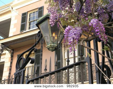 Gas Lamp Wisteria On Battery