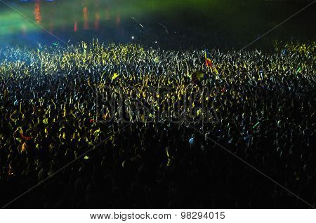 Partying Crowd At A Live Concert