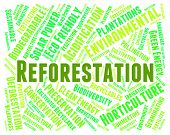 Reforestation Word Representing Woodland Woodlands And Jungle poster