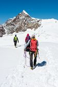 Group of climbers walking on a glacier. Monte Rosa massif, poster