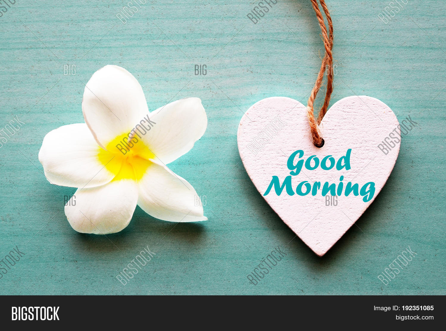 Good morning image photo free trial bigstock good morningcorative white wooden heart with frangipani flower and text good morning mightylinksfo