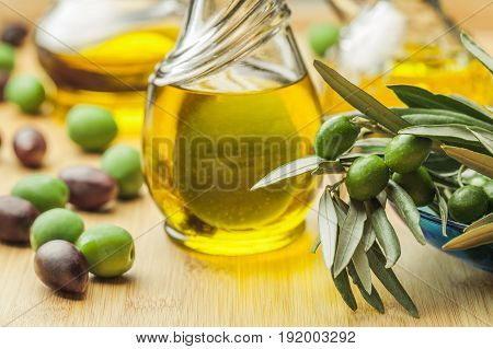 Oil branch olive olive oil olive trees olive grove green