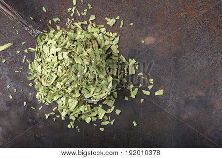 Spoon filled with dried tarragon on rusty background with copy space