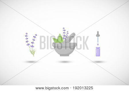 Mortar herbs with lavender vector flat icon set Flat design of aromatherapy cooking or ayurveda objects with round shadow vector illustration