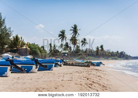 The group of motor boats of rescuers has a rest on the sandy ocean coast against the background of palm trees.