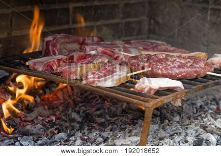 Meat roast in the barbecue in the countryside