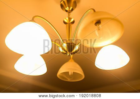 Burning lamps in a chandelier on the ceiling