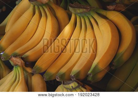 Bananas For Sale On Farmer's Market. Agriculture Background. Close-up. Top View
