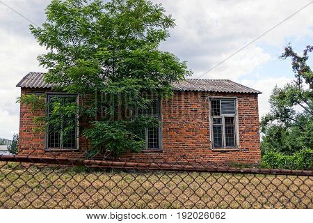 Brick rural house behind a green tree in the yard