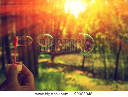 big soap bubbles into the sunset with beautiful bokeh.close-up