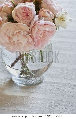 Closeup of wild pink roses in vase on white tablecloth