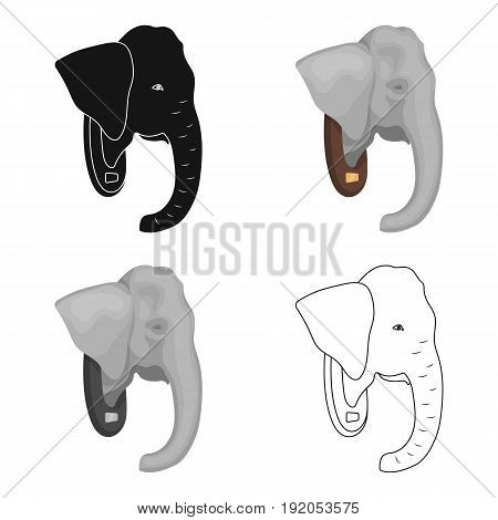 Stuffed elephant head.African safari single icon in cartoon style vector symbol stock illustration .