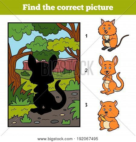 Find the correct picture, education game for children. Kangaroo and background