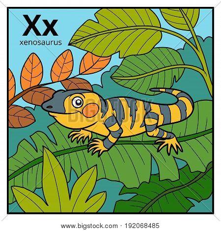 Color Alphabet For Children, Letter X (xenosaurus)