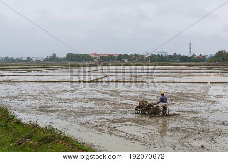 Man Is Working The Soil In Mud Rice Field