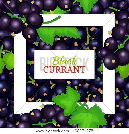 Square white frame and rectangle label on black berry background. Vector card illustration. Black currant fruit and leaves for packaging design food juice, jam, ice cream, smoothies, detox, cosmetics, tea