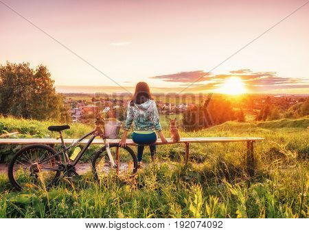 A girl and a dog are looking at a beautiful sunset on the horizon. Walking with a dog on a bike in the evening. A young girl and a dwarf chihuahua look at the setting sun in the evening
